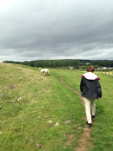 Kathryn walks in a sheep field like her MC from The Badger Knight.