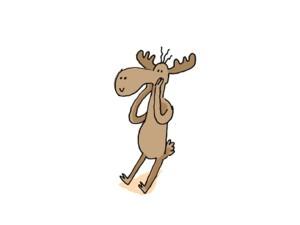 Moose step 1